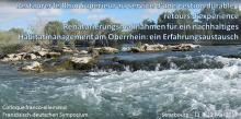 Restaurer le Rhin Supérieur au service d'une gestion durable : retours d'expérience